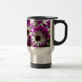 Purple and white pericallis flowers coffee mugs