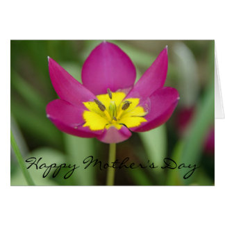 Purple and Yellow Flower Mother's Day Card