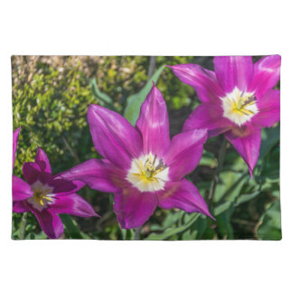 Purple and yellow flowers placemat