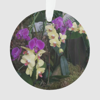 Purple and Yellow Orchids Ornament
