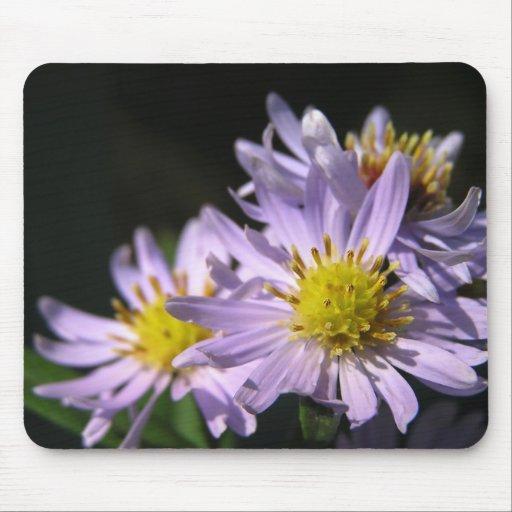 Purple Asters I Mousepad