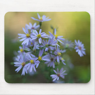 Purple Autumn Asters Floral Wildflower Mousepad