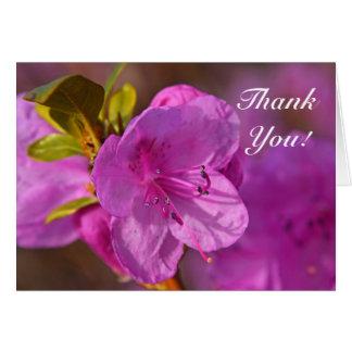 Purple Azalea rhododendron flower Thank You Card