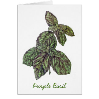 Purple Basil Card