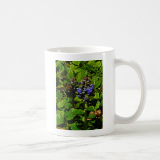 Purple Bee Balm and Bumble Bee Coffee Mug