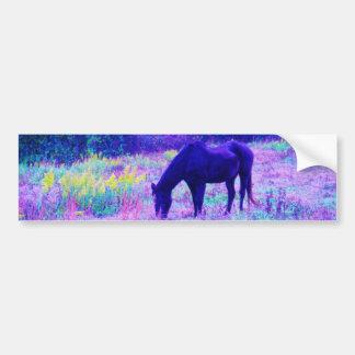 Purple Black Horse in Rainbow field Bumper Sticker
