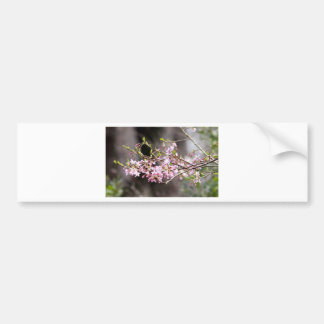 Purple blooms bumper sticker