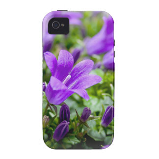 purple blossoms vines plants flora bellflower vibe iPhone 4 covers