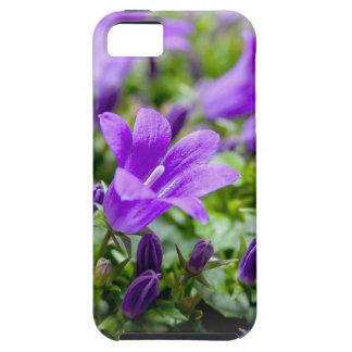 purple blossoms vines plants flora bellflower iPhone 5 cover