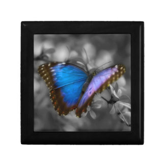 Purple Blue Butterfly Small Square Gift Box
