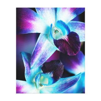 Purple & Blue Dendrobium Orchid Customized Orchids Canvas Prints