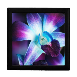 Purple & Blue Dendrobium Orchid Customized Orchids Large Square Gift Box