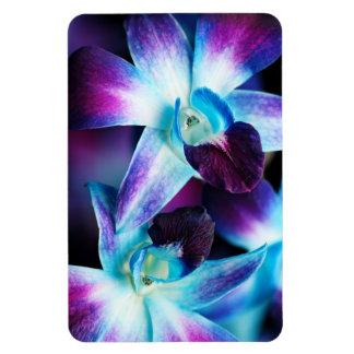 Purple & Blue Dendrobium Orchid Customized Orchids Rectangular Photo Magnet