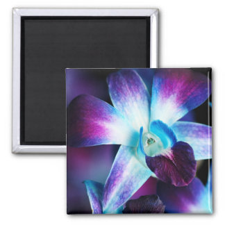 Purple & Blue Dendrobium Orchid Customized Orchids Square Magnet