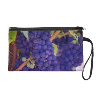 Purple Blue Grape Bunches on the Vine Wristlet Purses