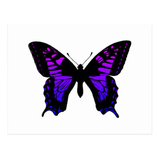 Purple Blue Ombre Wing Butterfly Postcard