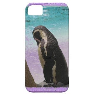 Purple Border Penguin Phonecase iPhone 5 Cases