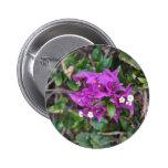 Purple Bougainvillea Photo Badges