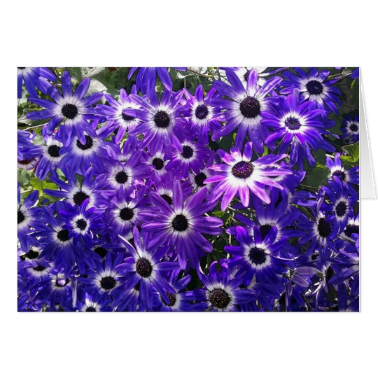 Purple Bunch Card