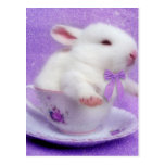 Purple Bundle Of Joy Post Card