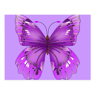 Purple Butterfly Post Cards