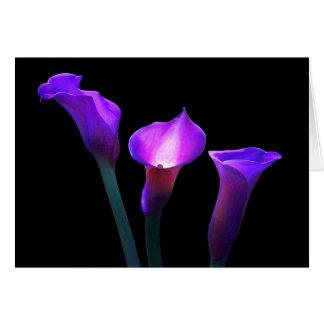 purple calla lily card