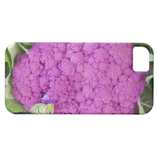 Purple cauliflower for sale iPhone 5 covers