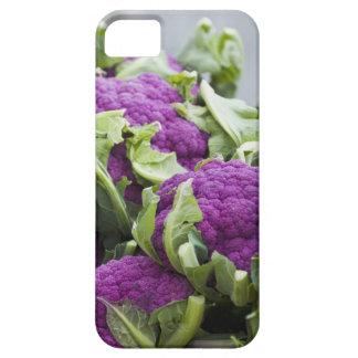 Purple cauliflower iPhone 5 covers