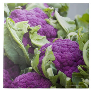 Purple cauliflower large square tile
