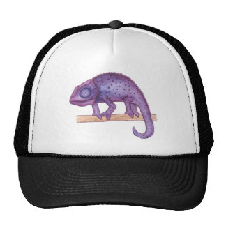 Purple Chameleon Cap