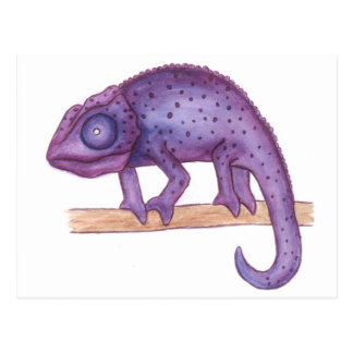 Purple Chameleon Postcard