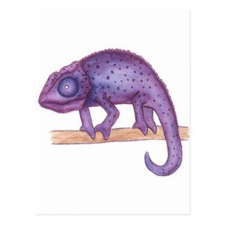 Purple Chameleon Postcard