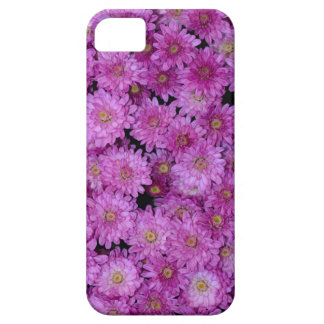 Purple chrysanthemum flowers iPhone 5 covers