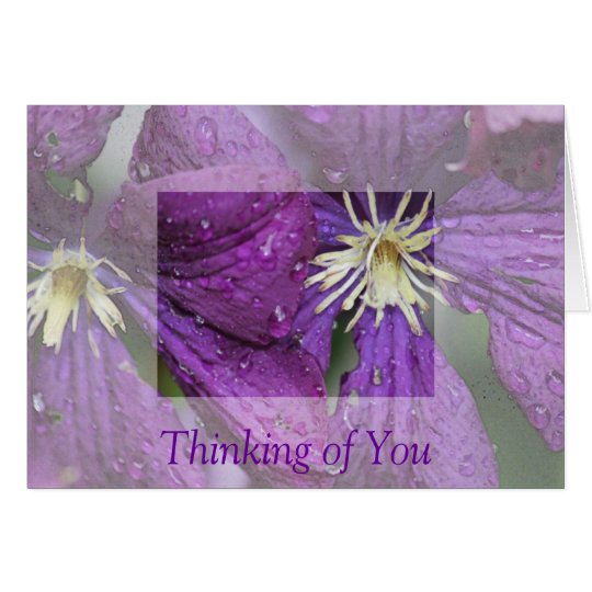 Purple Clematis Card