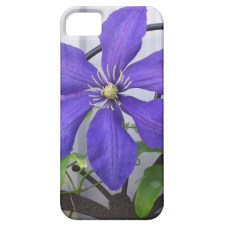 Purple Clematis iPhone 5 Covers