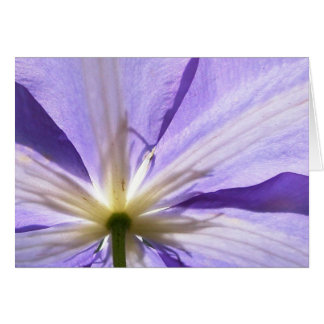 Purple clematis - Sympathy card