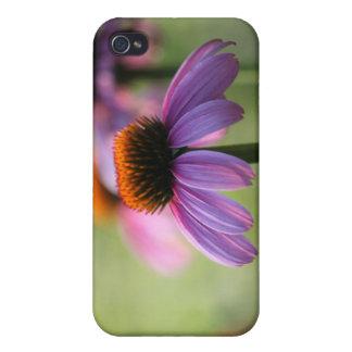 Purple Coneflowers Case iPhone 4/4S Case