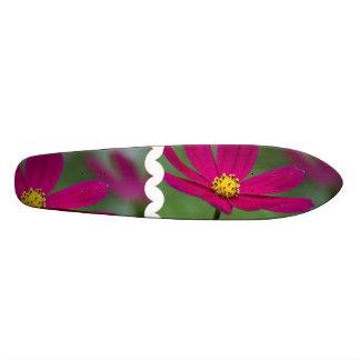 Purple Cosmos Skate Board Decks