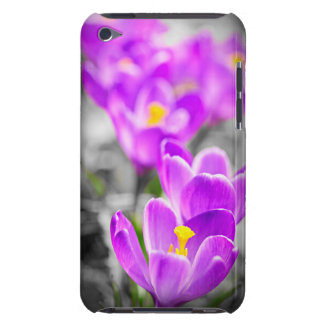 Purple crocus flowers barely there iPod cases
