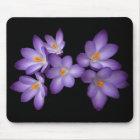 Purple Crocus Mouse Mat