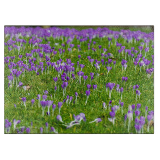 Purple crocuses flowers glass cutting board