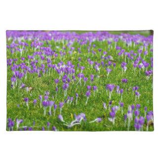 Purple crocuses flowers placemat