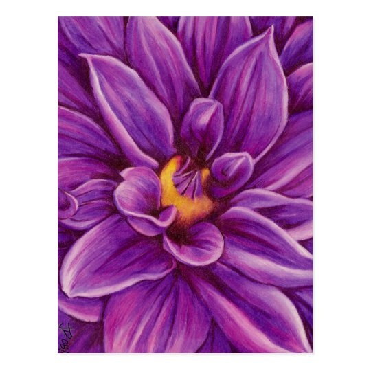 Purple Dahlia Flower Original Art Postcard