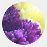 Purple Dahlias Classic Round Sticker