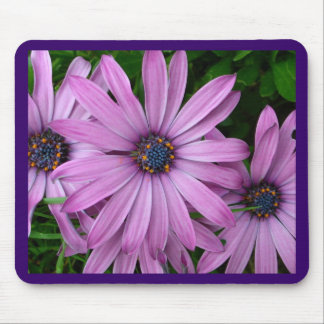 Purple Daisies Mouse Mat