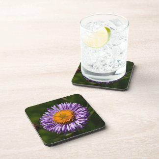 Purple Daisy Cork Coaster