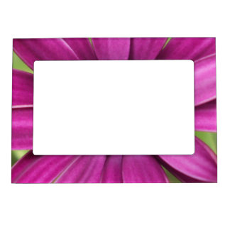 Purple Daisy Floral Photo Frame Magnet
