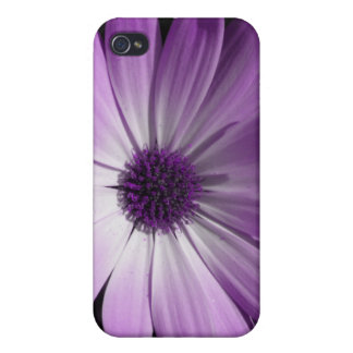Purple Daisy Flower  Case For The iPhone 4