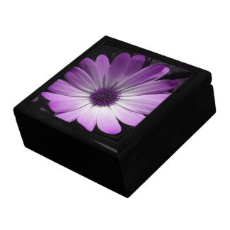 Purple Daisy Flower Gift Box
