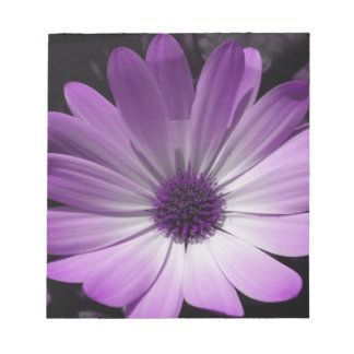 Purple Daisy Flower Notepad